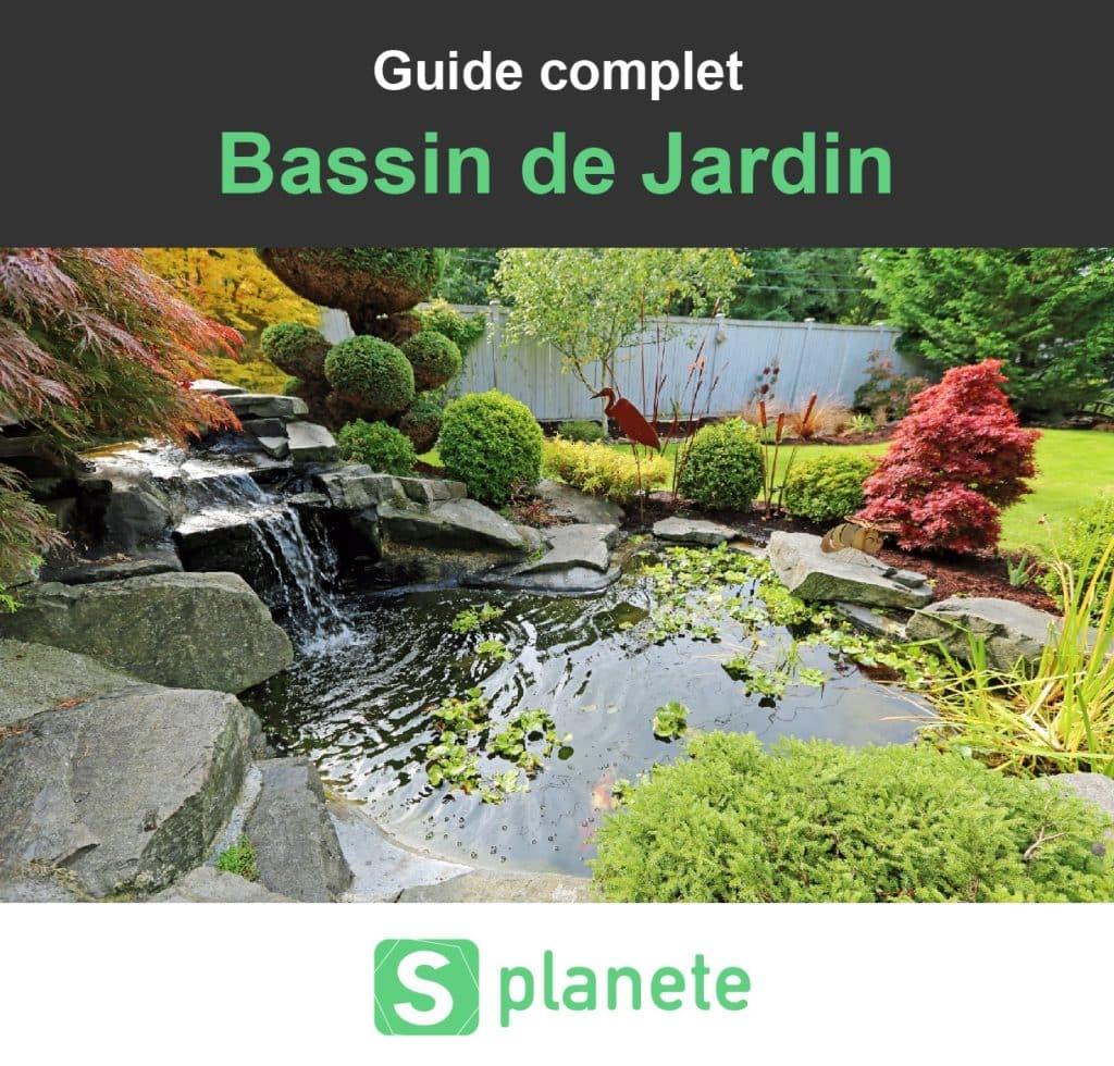Bassin De Jardin : Construire, Aménager Et Entretenir ... serapportantà Profondeur D Un Bassin De Jardin