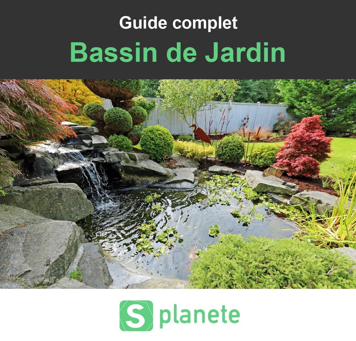 Bassin De Jardin : Construire, Aménager Et Entretenir ... tout Construire Un Bassin De Jardin