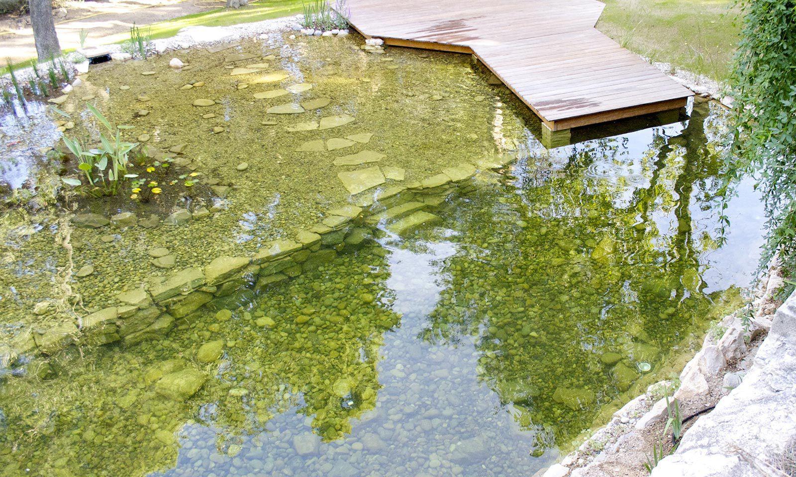 Bassin De Jardin En Pierre - 1/15 - By Olivier Clavel concernant Bassin De Jardin En Pierre