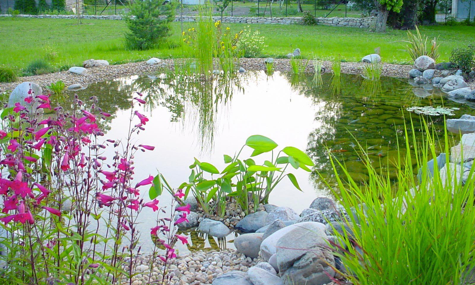 Bassin De Jardin En Pierre - 2/15 - By Olivier Clavel destiné Bassin De Jardin En Pierre