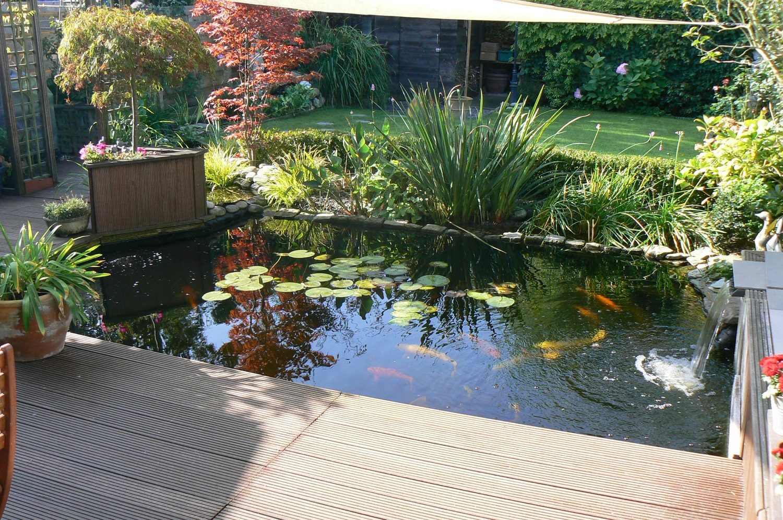 Bassin De Jardin | La Transparence | Belgique, Bruxelles ... concernant Amenagement Jardin Belgique