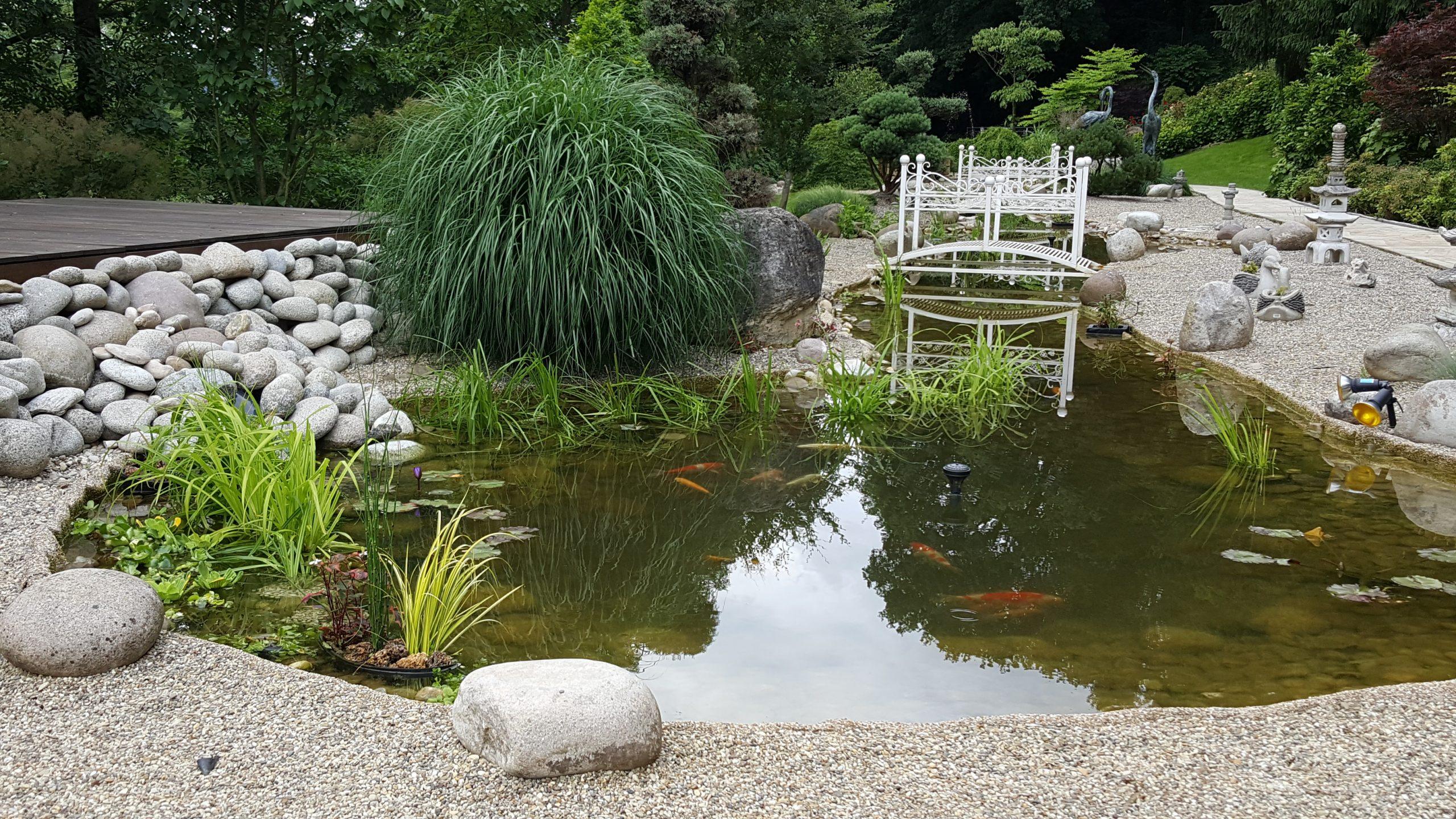 Bassin De Jardin Moselle dedans Bassin De Jardin Préformé