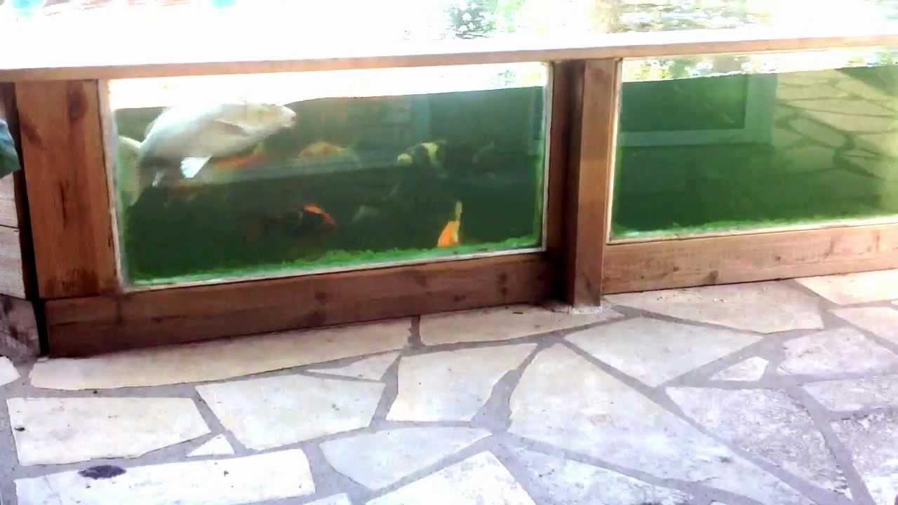 Bassin De Jardin Sur Mesure avec Bassin De Jardin Hors Sol