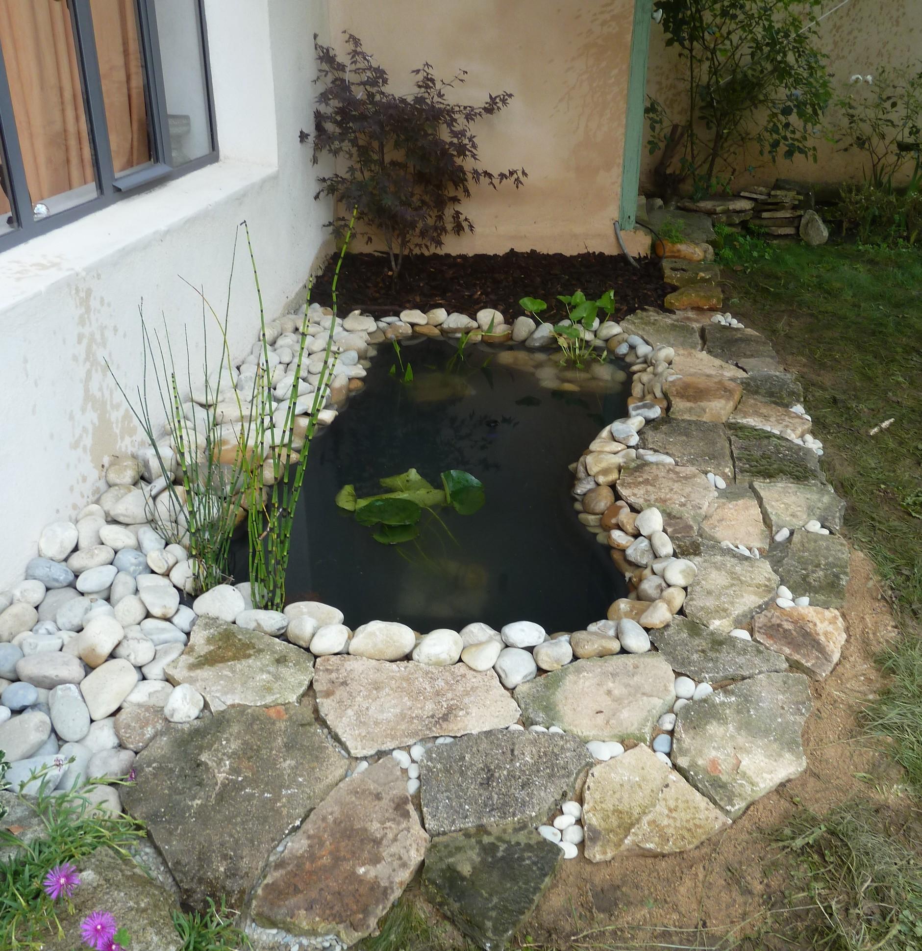 Bassin D'ornement | Jardins Et Bassins encequiconcerne Petit Bassin Pour Jardin