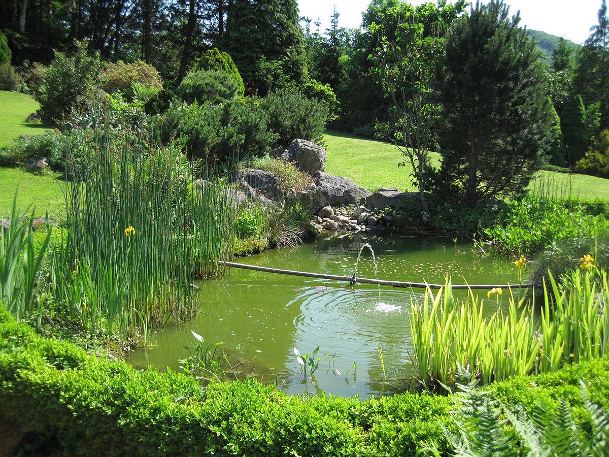 Bassin (Jardinage) — Wikipédia à Petit Bassin Pour Jardin