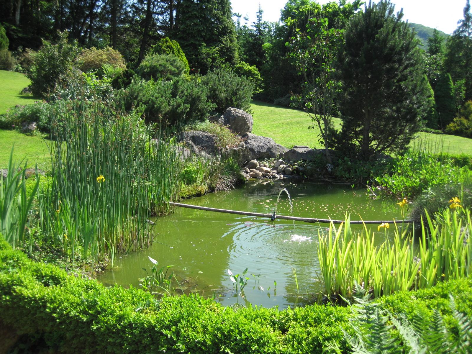 Bassin (Jardinage) — Wikipédia pour Bac Poisson Jardin
