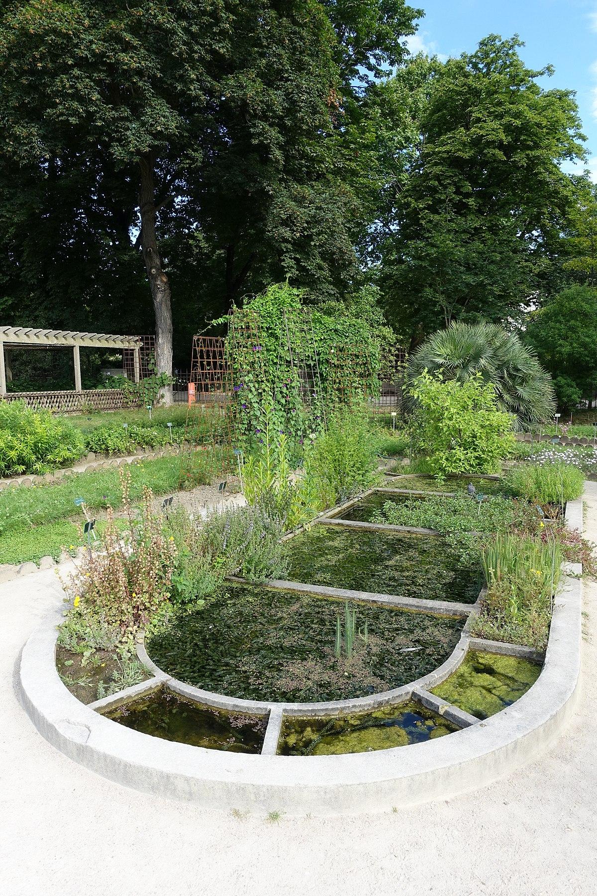 Bassin (Plan D'eau) — Wikipédia concernant Plante Bassin De Jardin