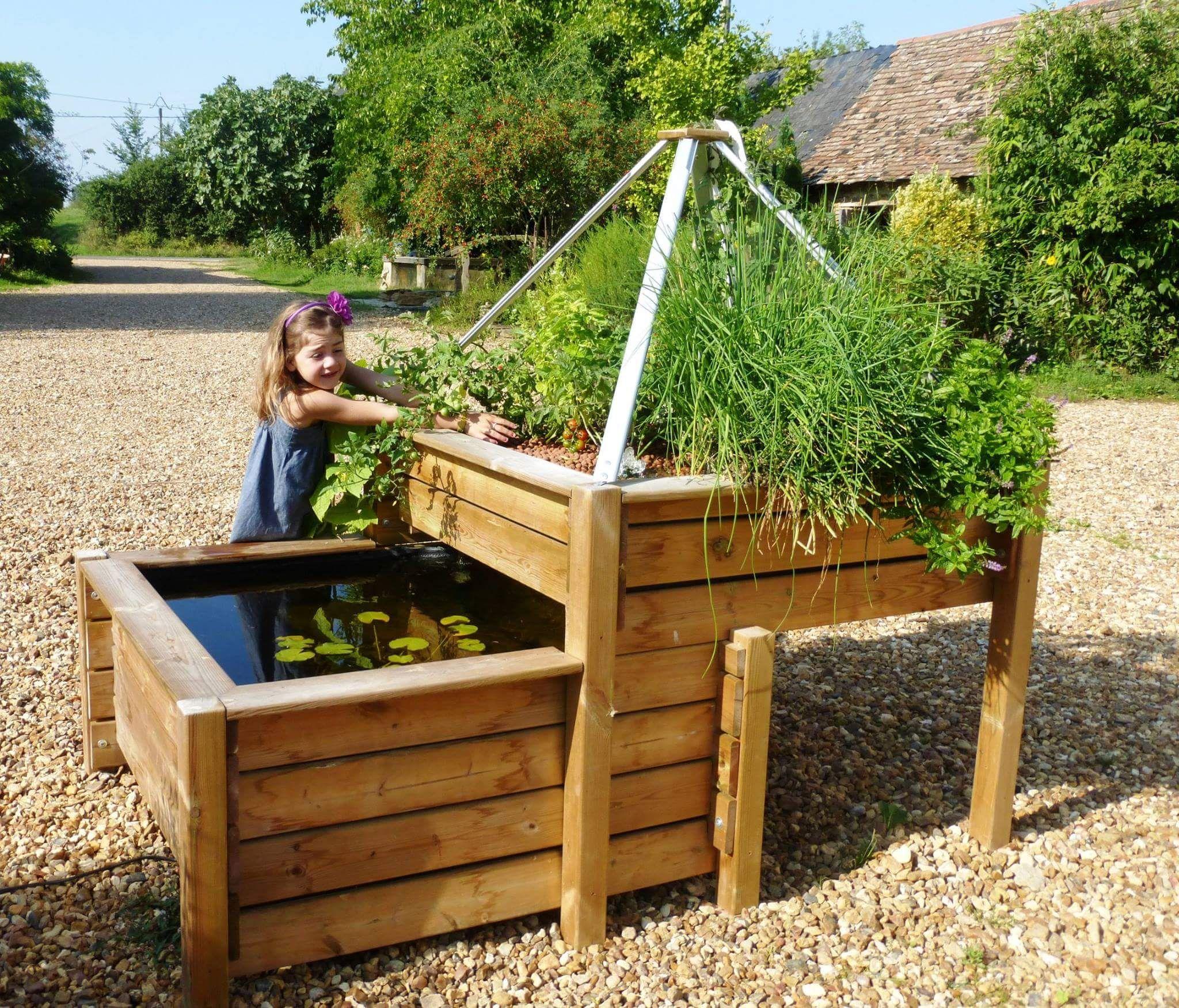 Bassin Potager Aquaponique - Une Table Potagère En Bois Et ... avec Bassin De Jardin Hors Sol
