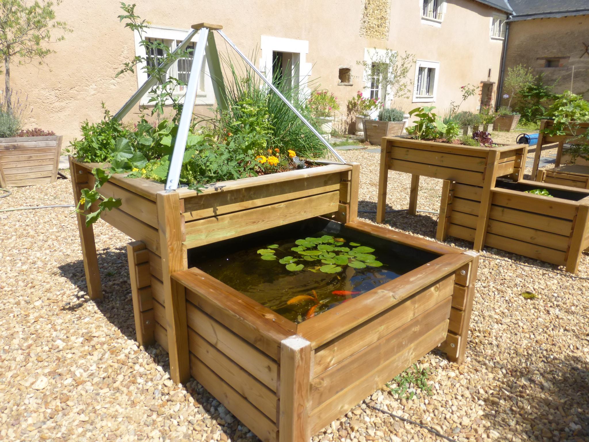 Bassin Potager Selon Le Principe De L'aquaponie - Blog Jardin à Bassin De Jardin Hors Sol