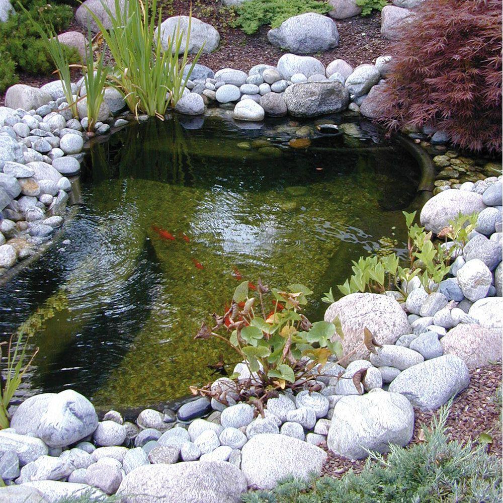Bassin Préformé En Hdpe Ubbink 1500L avec Bac Poisson Jardin