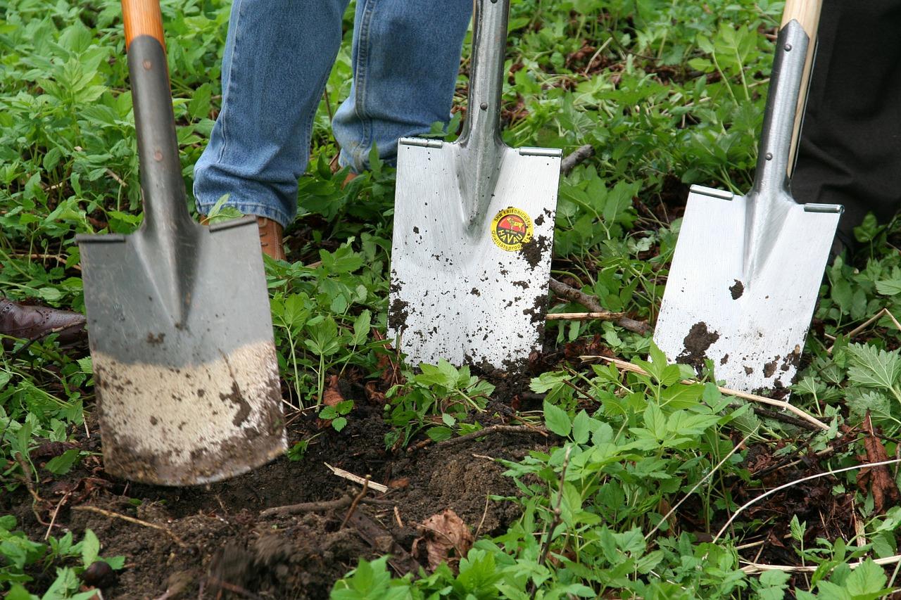 Bêcher Son Jardin : Une Mauvaise Pratique ? - Tout Jardin Direct dedans Quelle Chaux Pour Le Jardin