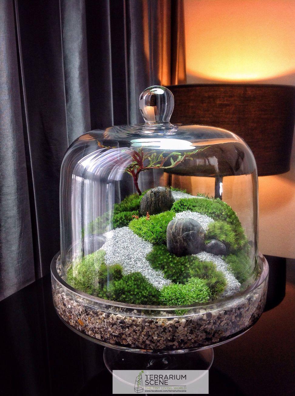 Best Terrarium Ideas 62   Terrarium Pour Plantes Grasses ... encequiconcerne Accessoires Pour Jardin Japonais