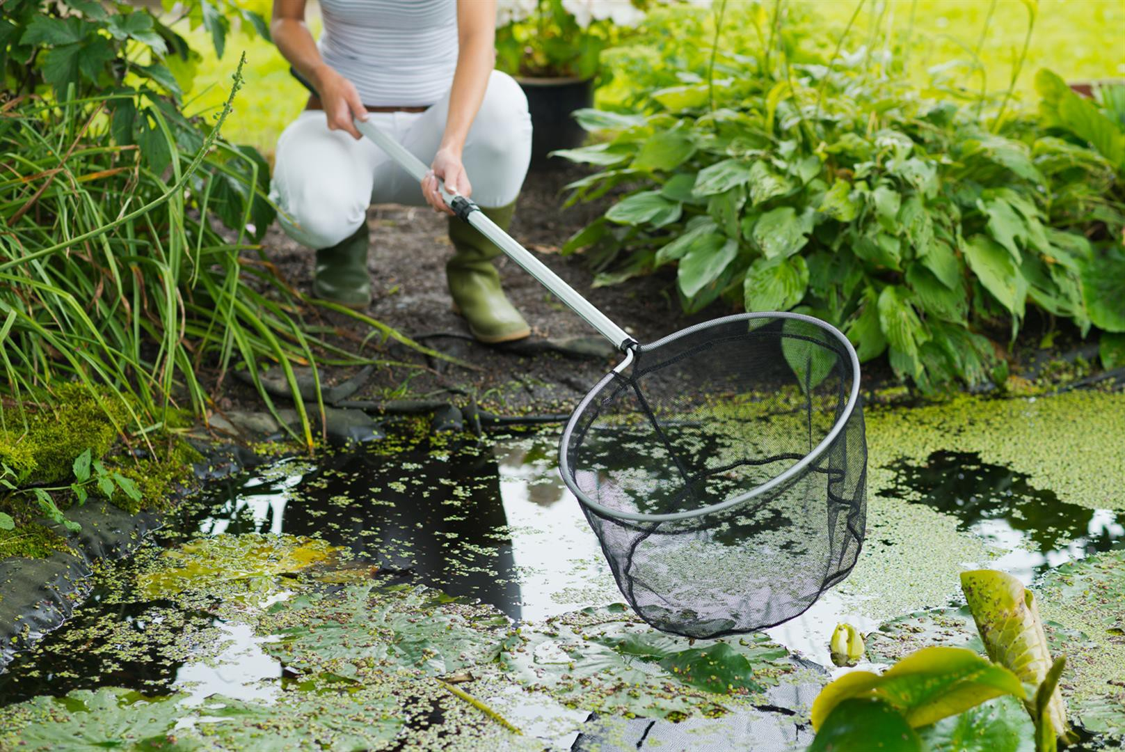 Bien Entretenir Votre Bassin De Jardin dedans Entretien D Un Bassin De Jardin