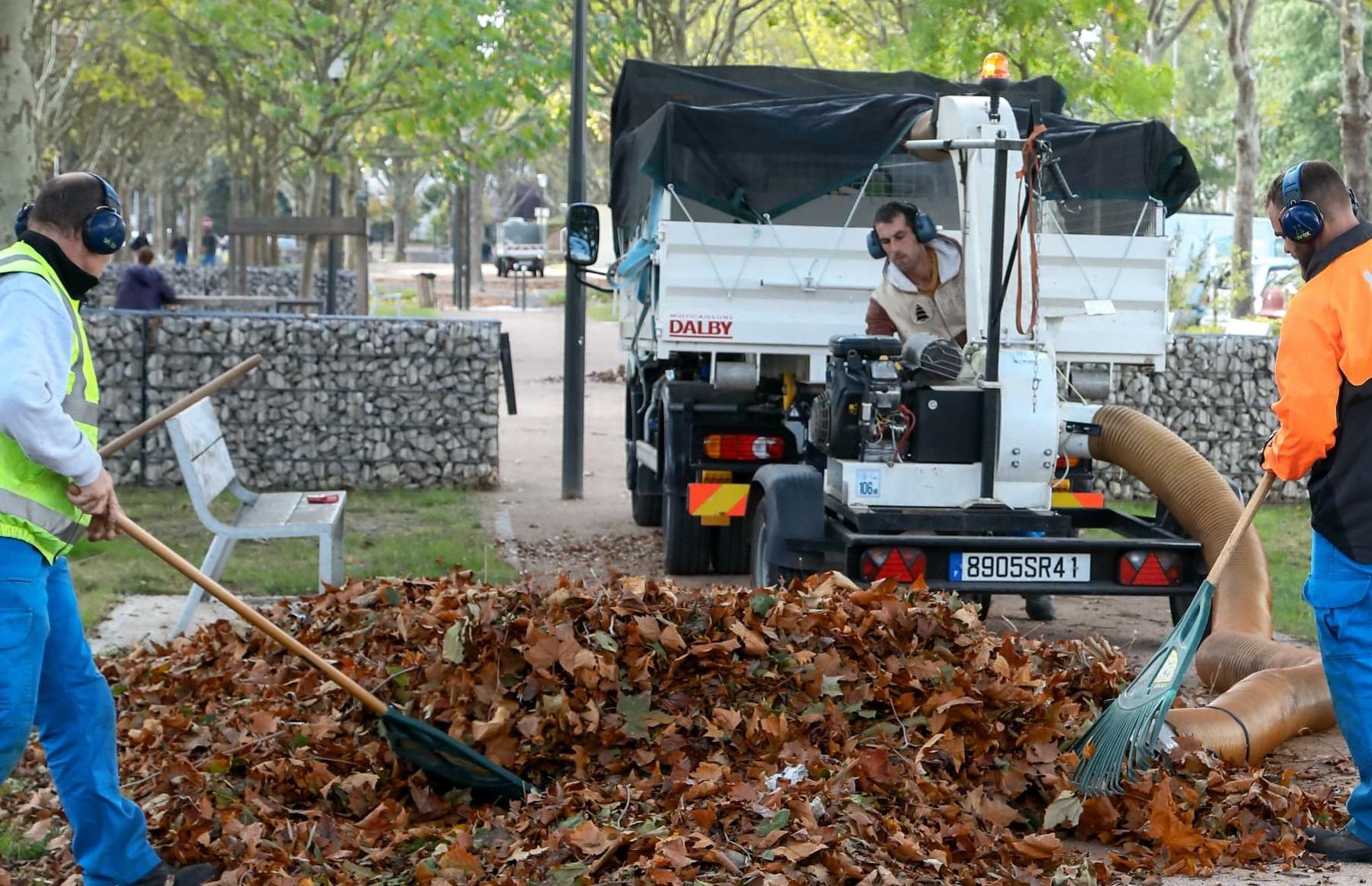 Biomasse : À Amiens, Les Feuilles Mortes Chauffent Les ... concernant Bruler Feuilles Jardin