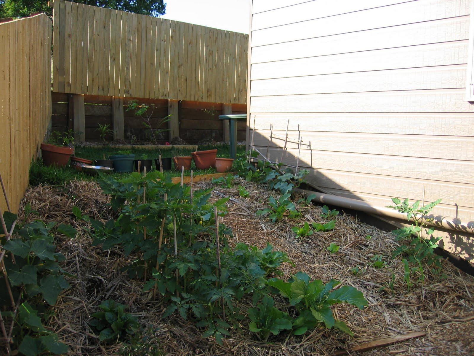 Blog Pascal: Jardin Potager intérieur Ecorces Jardin