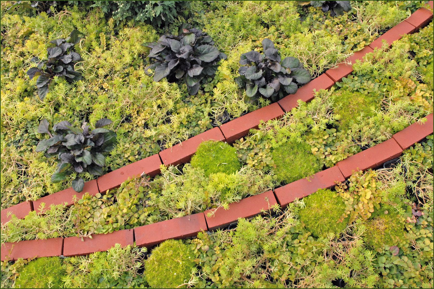 Bordure De Jardin : Aménager Et Décorer Son Jardin ... encequiconcerne Faire Ses Bordures De Jardin