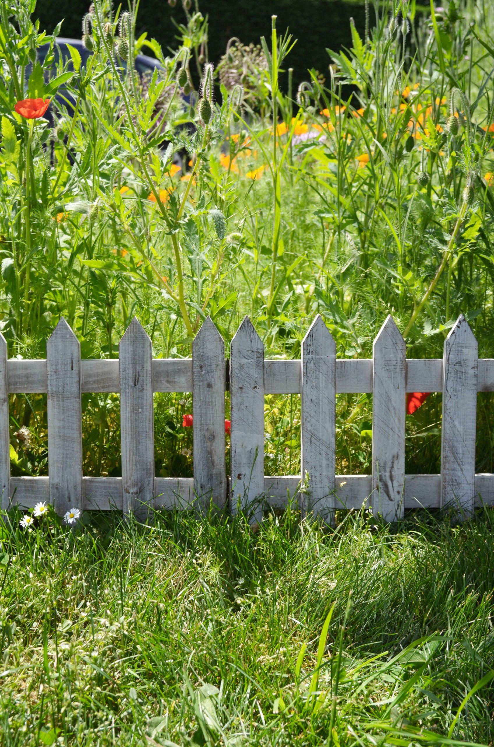 Bordure De Jardin Articulée En Bois De Sapin Pour La ... avec Barriere Pour Jardin