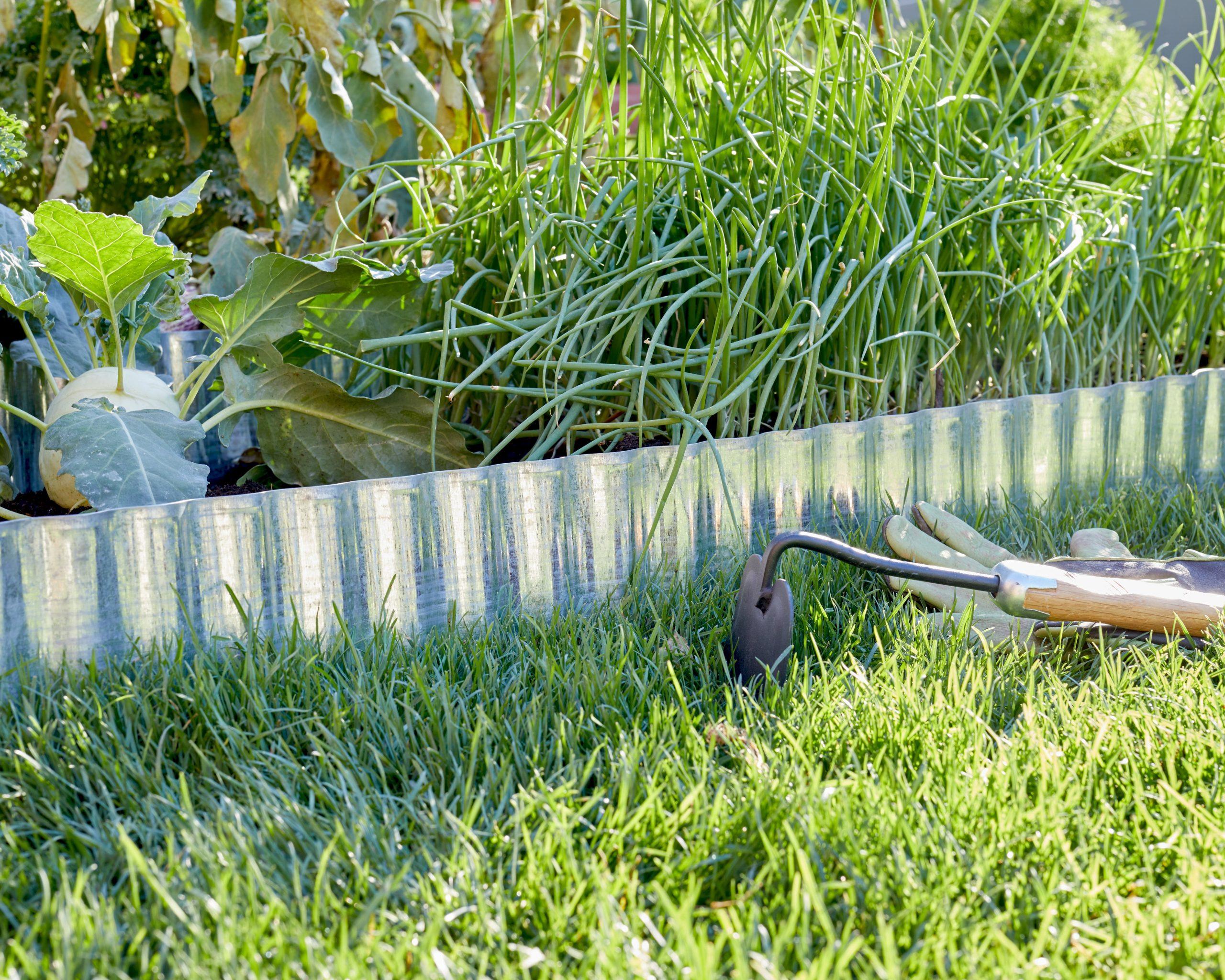 Bordure Décoratif Acier Galvanisé Gris, H.14 X L.14 Cm intérieur Bordure De Jardin Plastique Leroy Merlin