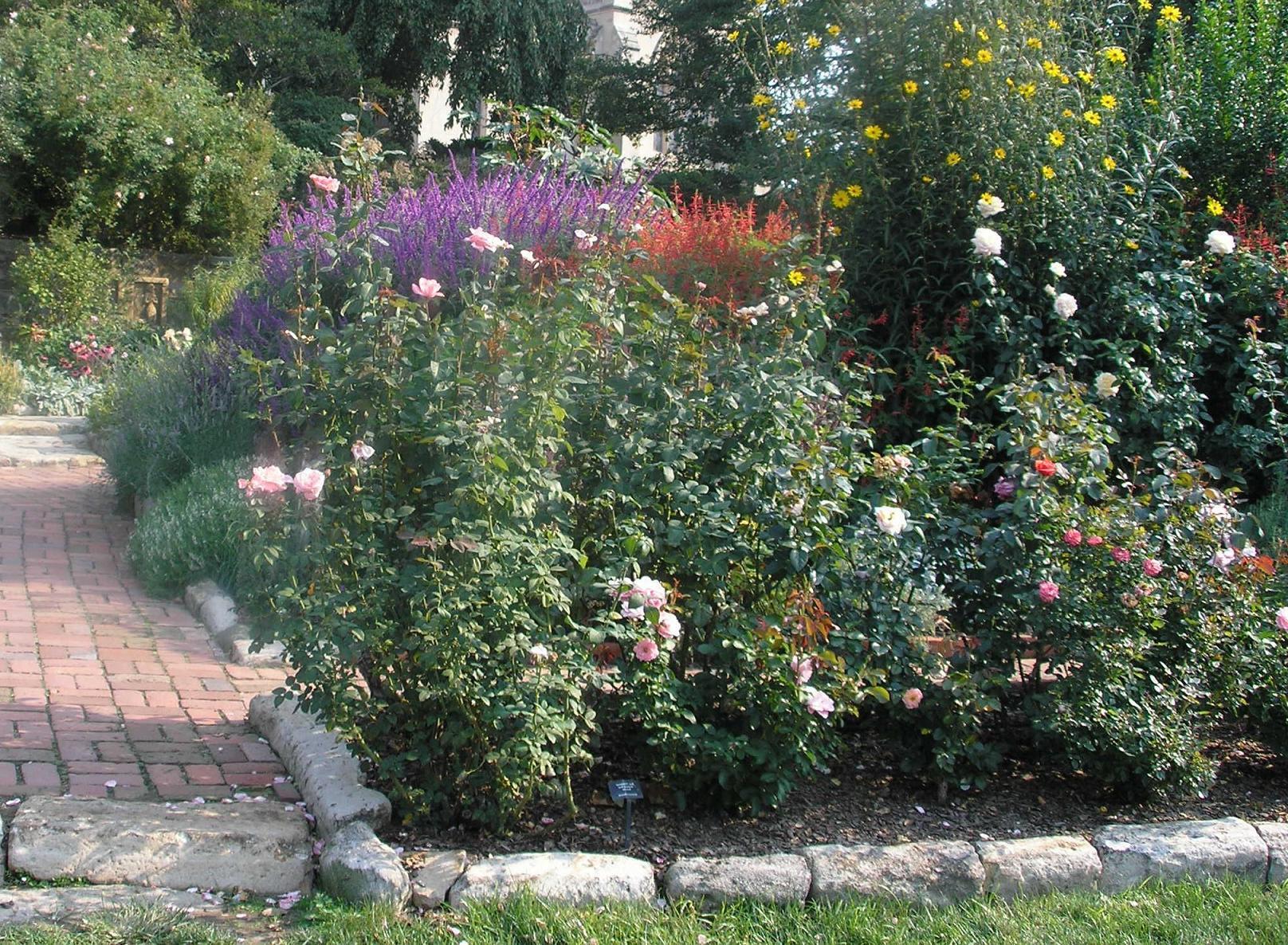 Bordure Jardin : Installer Des Bordures De Jardin | Pratique.fr dedans Bordure De Jardin En Pierre