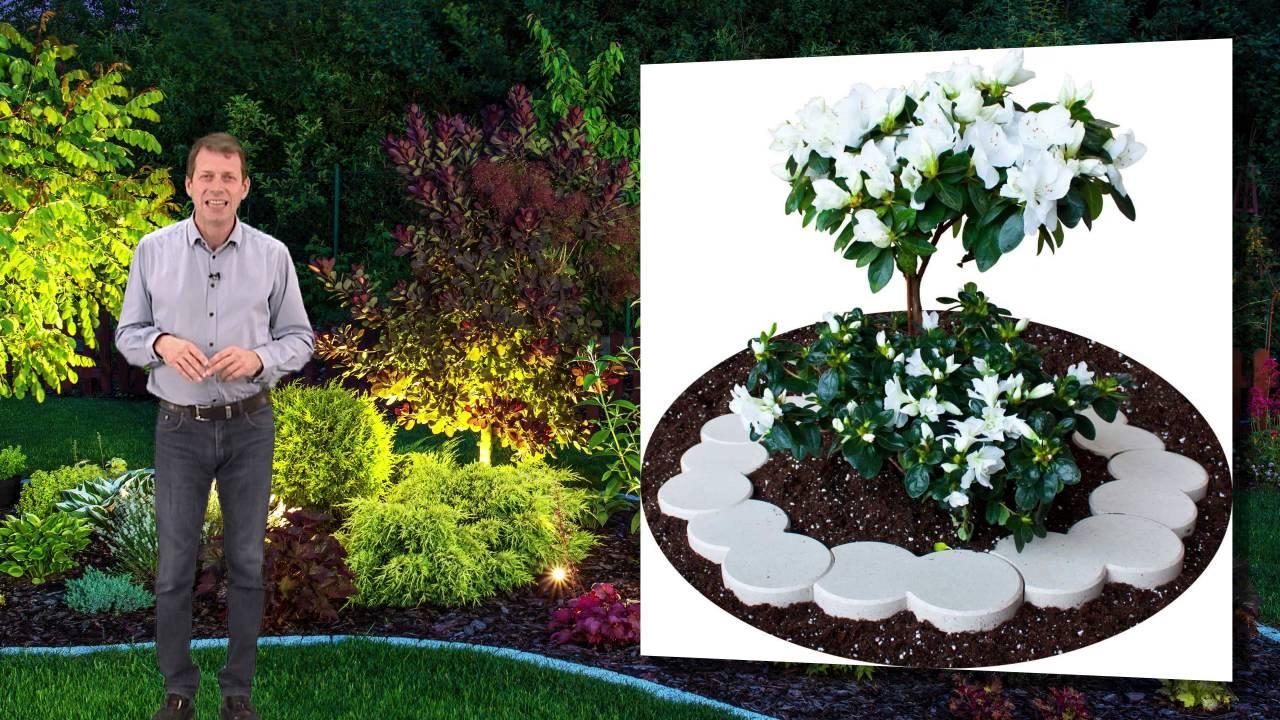 Bordure Plastique Jardin Et Terrasse encequiconcerne Bordure Jardin Pvc