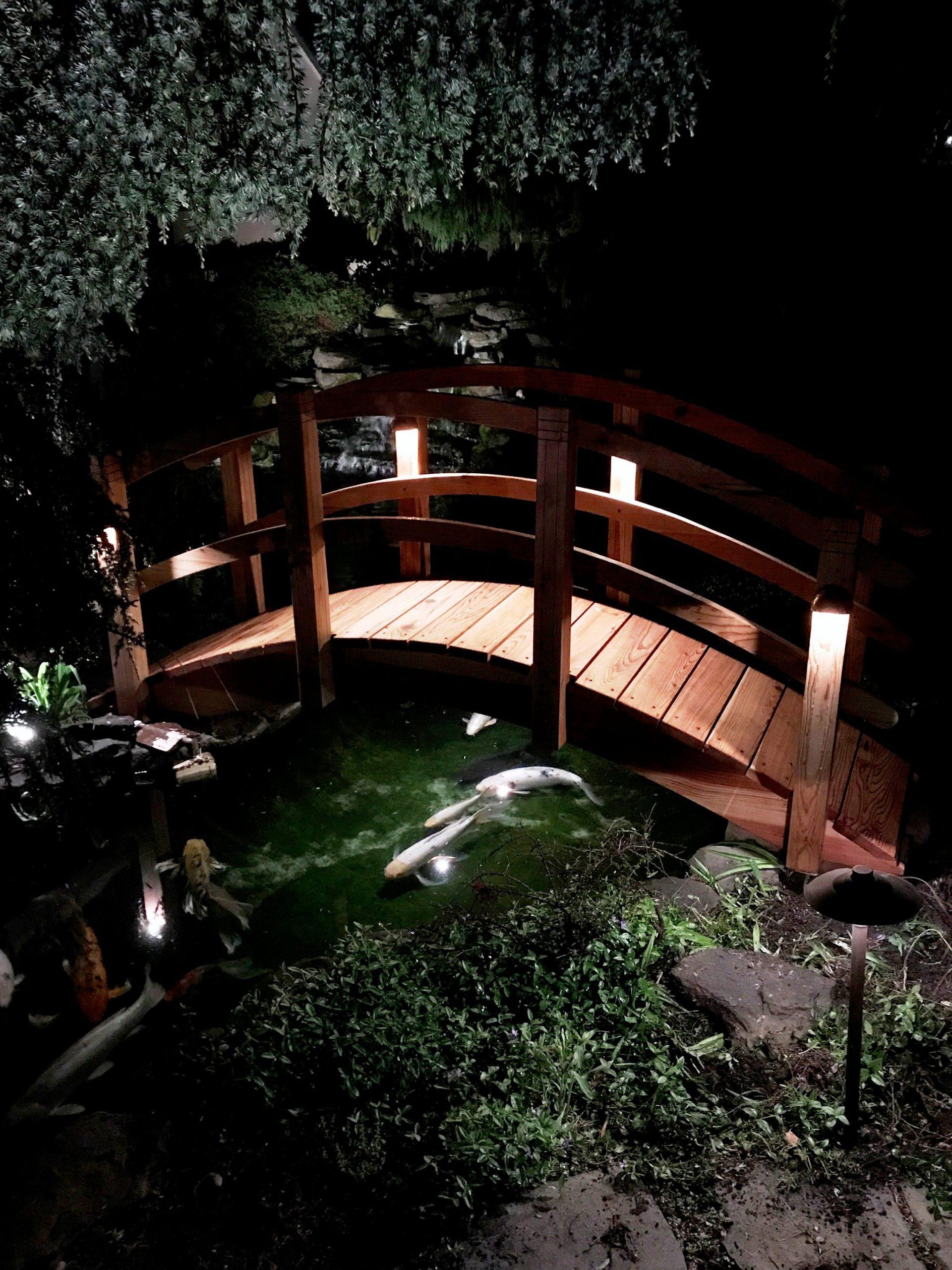 Bridge Lighting | Decoration Jardin, Jardin Recup Et Jardins destiné Accessoires Pour Bassin De Jardin