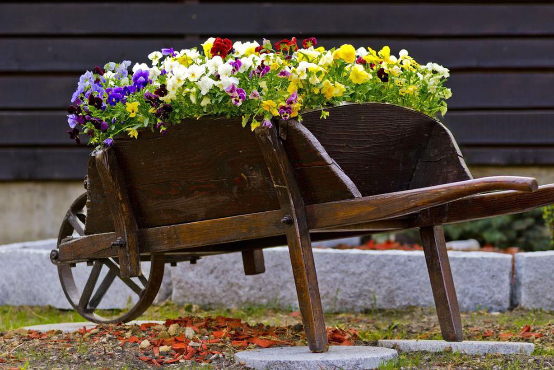 Brouette Bois Decorative D'occasion concernant Brouette Deco Jardin