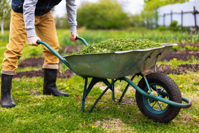 Brouette : Comment Bien Choisir Sa Brouette De Jardin, Notre ... à Brouette Deco Jardin