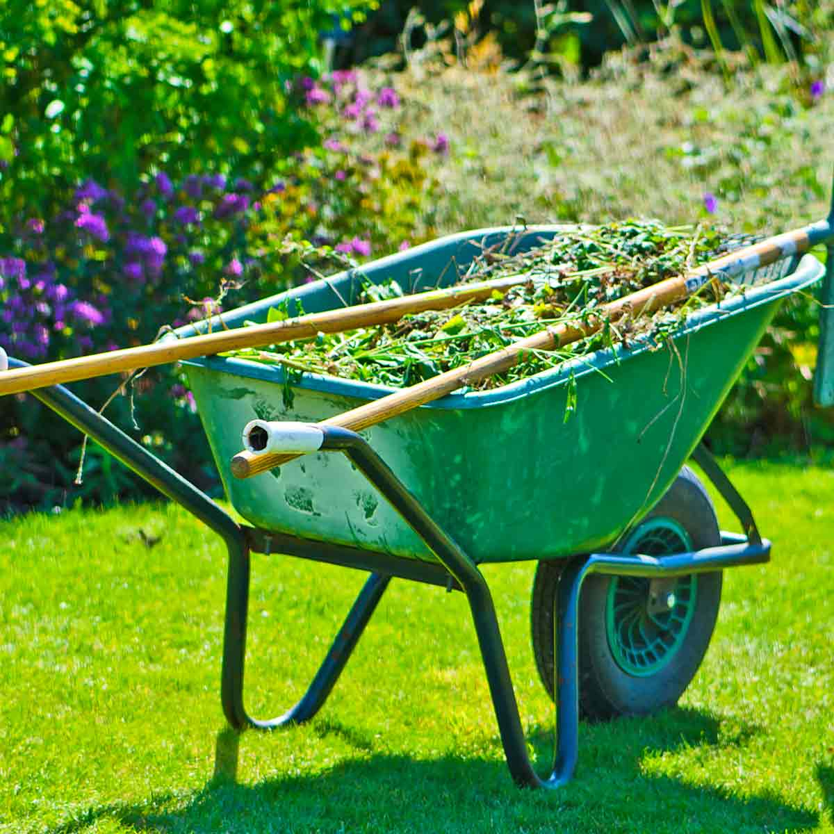 Brouette Et Support À Roulettes Pour Pots De Fleurs À Prix ... pour Brouette Deco Jardin