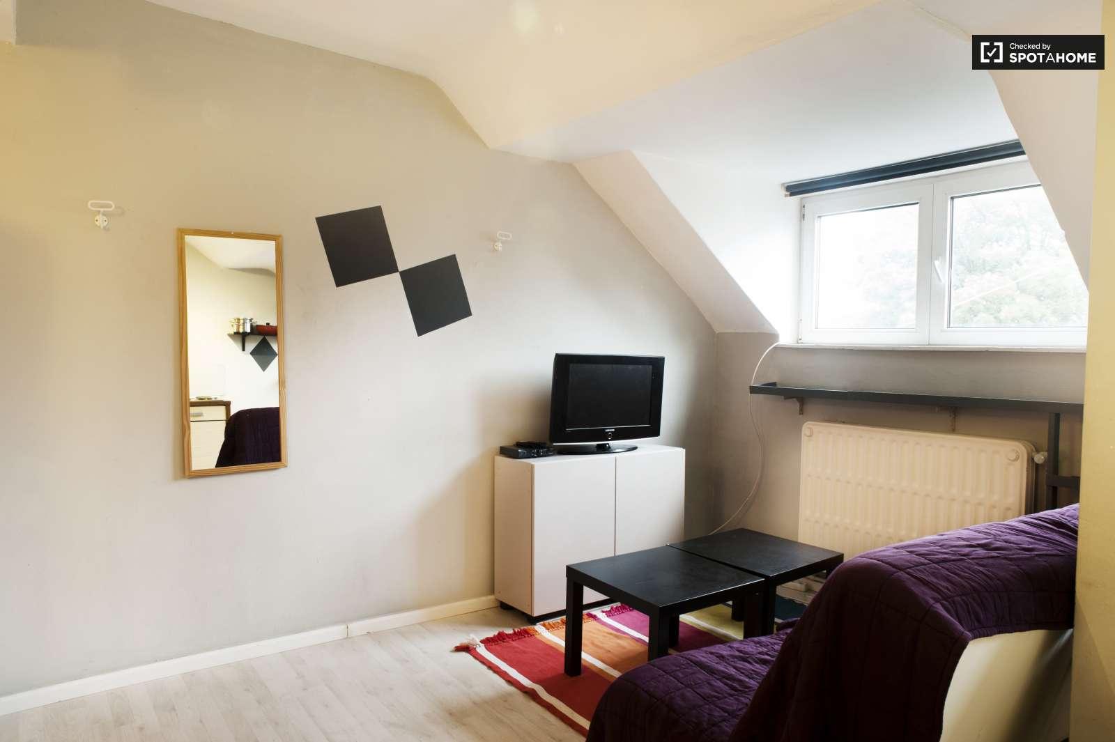 Brüksel, Belçika Kiralık Stüdyo Daireler. | Erasmusu destiné Studio De Jardin Habitable
