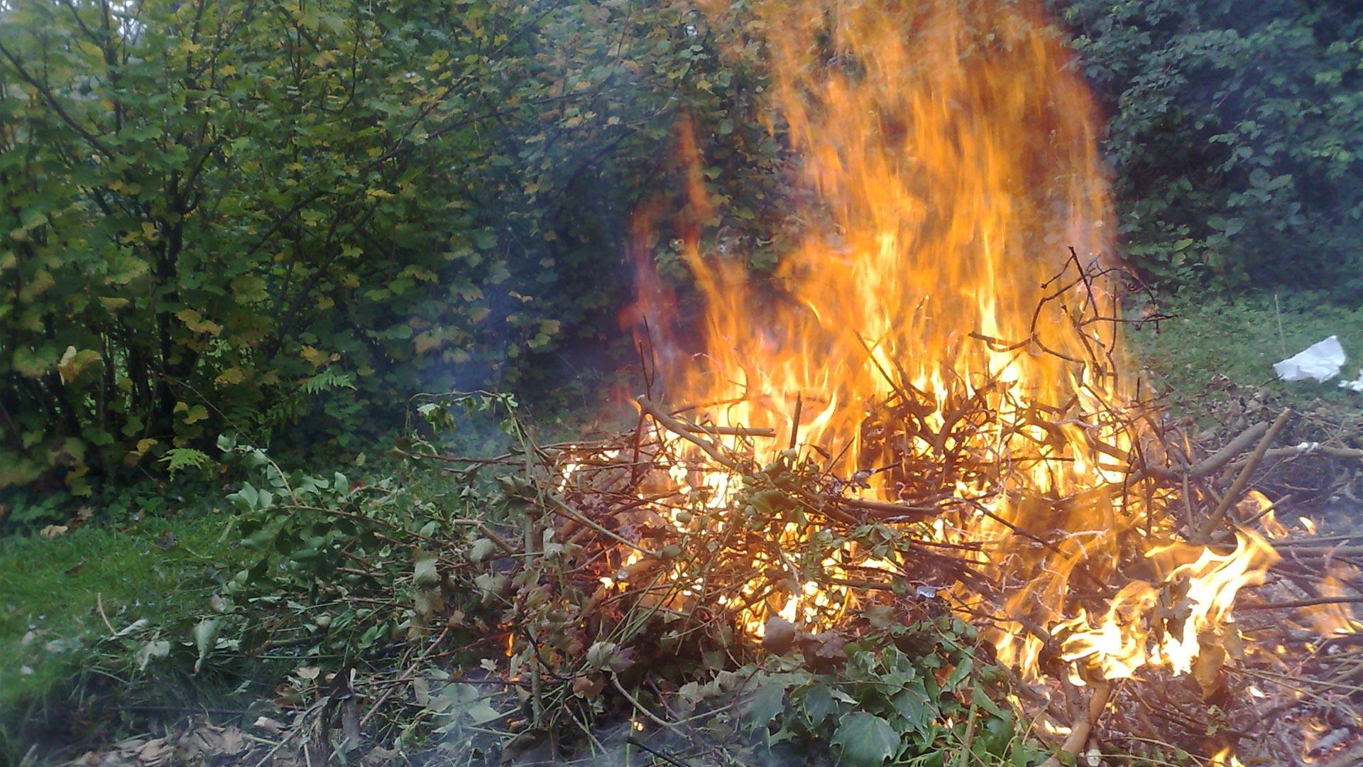 Brûlage De Végétaux Et Déchets Verts, Tout Savoir ... destiné Bruleur De Déchets Jardin