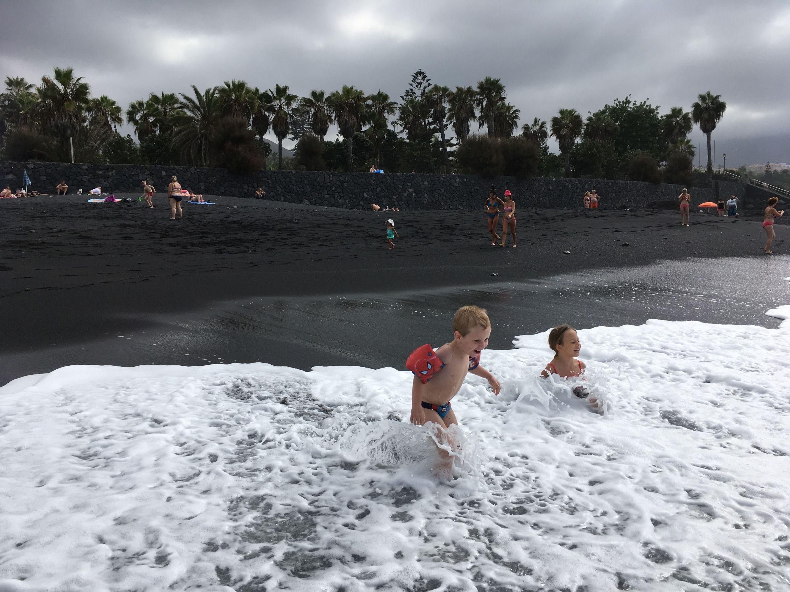 But Jardin Charmant Playa Jardn Puerto De La Cruz In Stormy ... destiné Materiel De Jardin Discount