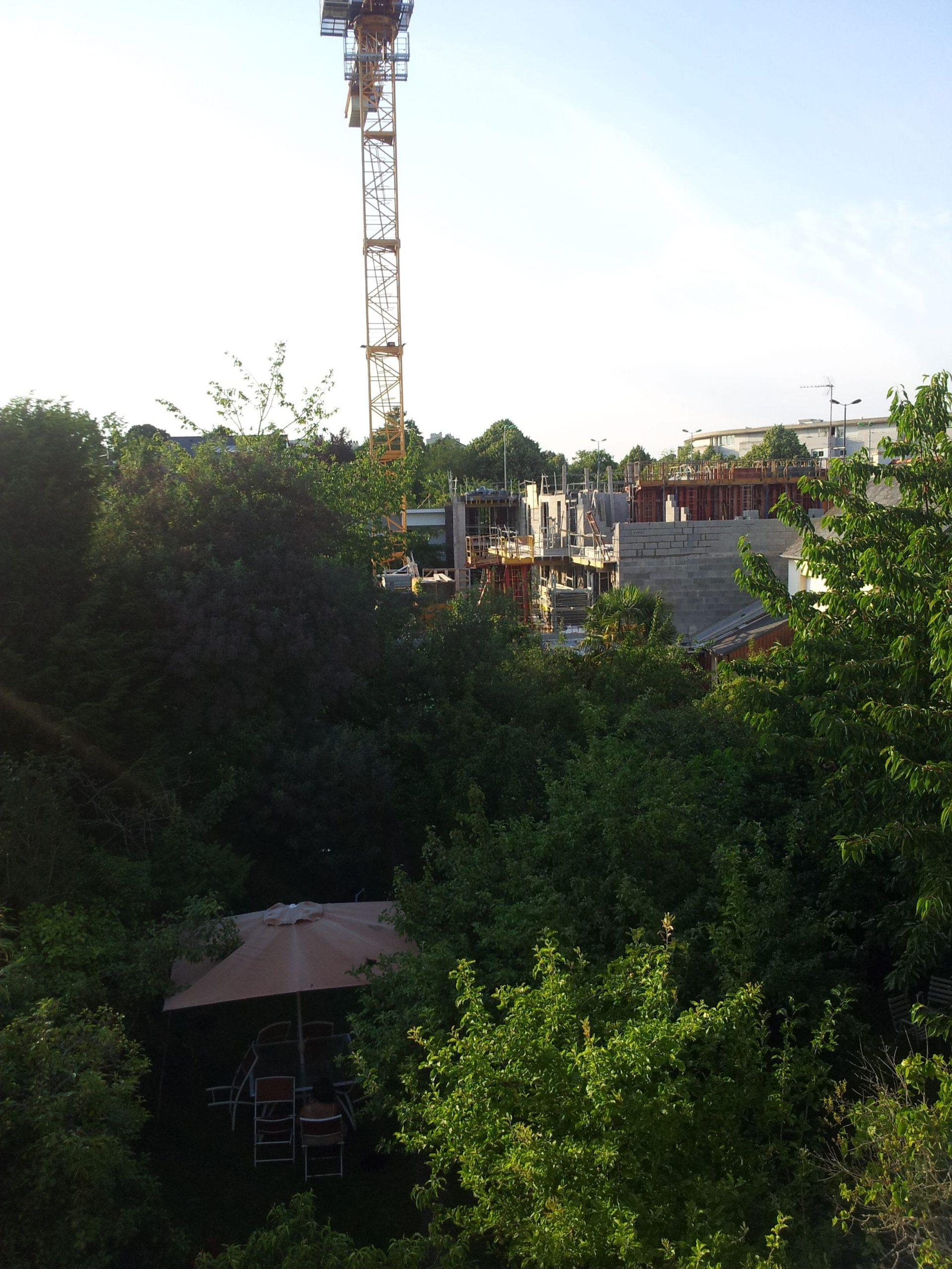 Cacher Vis À Vis Immeuble - Au Jardin, Forum De Jardinage avec Cacher Vis A Vis Jardin