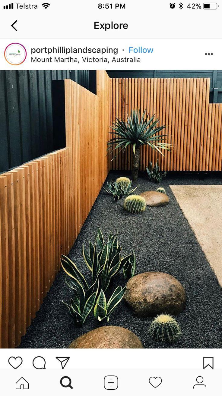 Cactus En Gravier Gris Avec Des Rochers Lisses Au Bord Du ... dedans Idee Deco Jardin Gravier