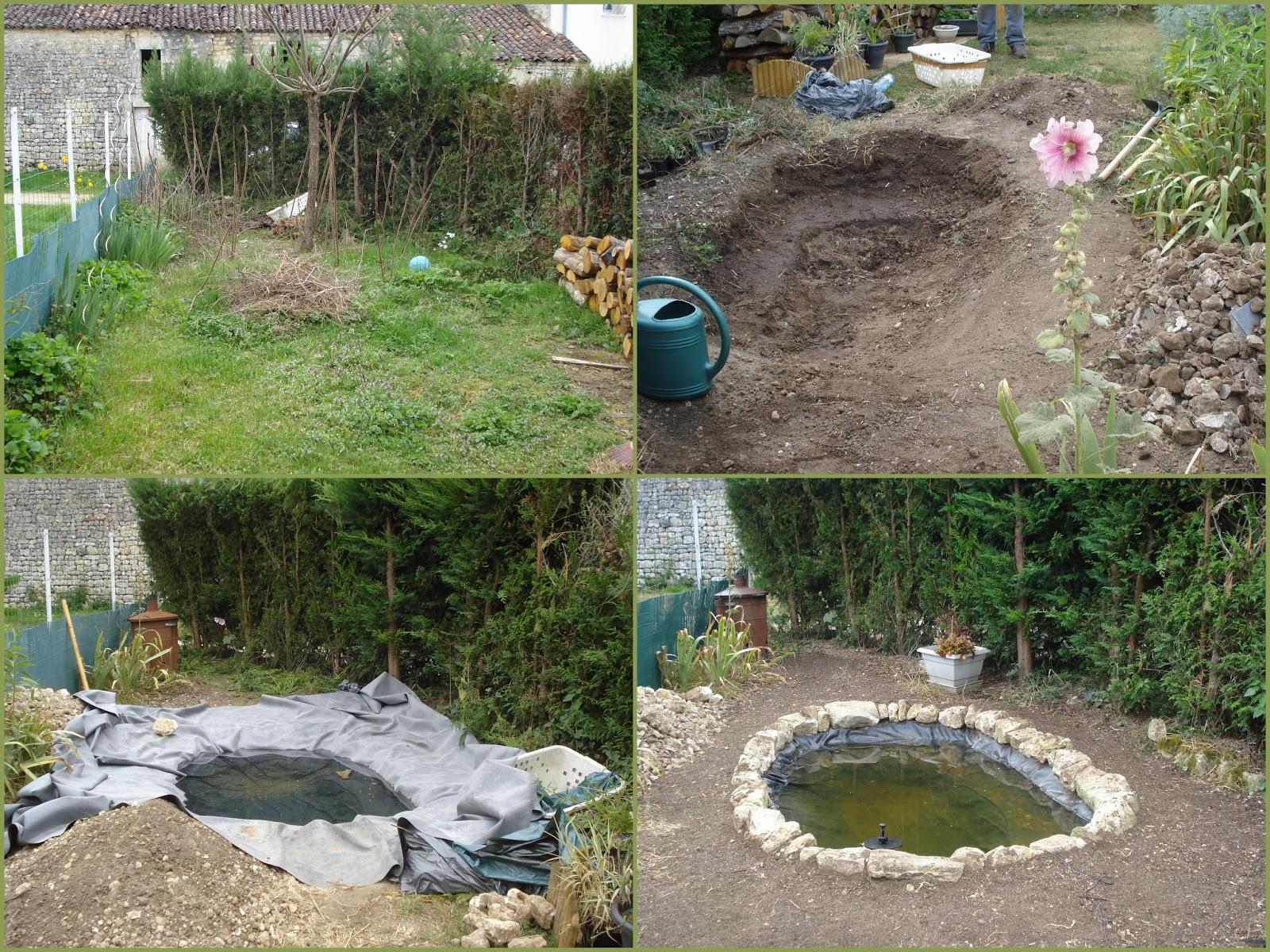 Cagouille's Garden : Premier Anniversaire Du Bassin ! à Plante Bassin De Jardin