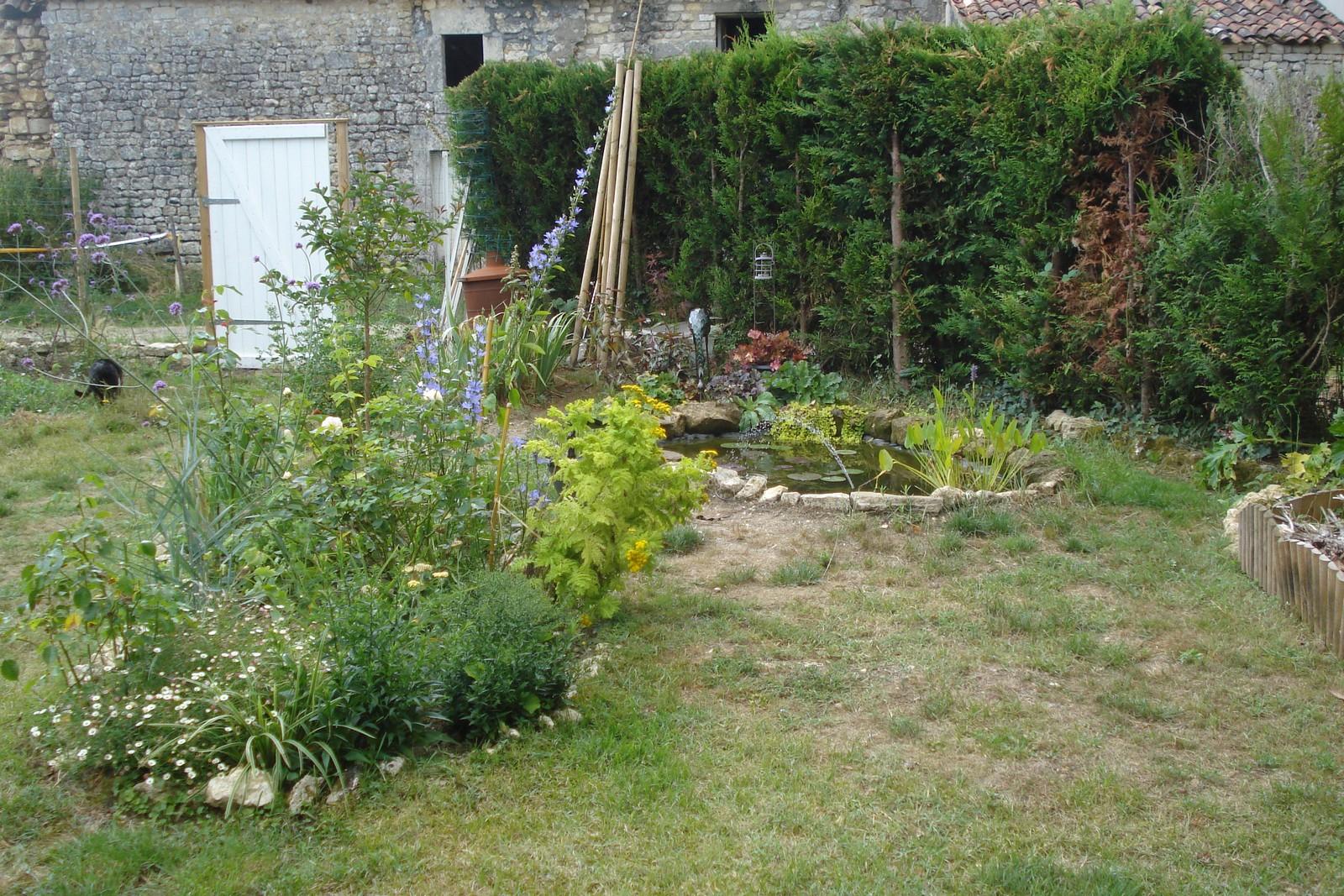 Cagouille's Garden : Premier Anniversaire Du Bassin ! tout Plante Bassin De Jardin