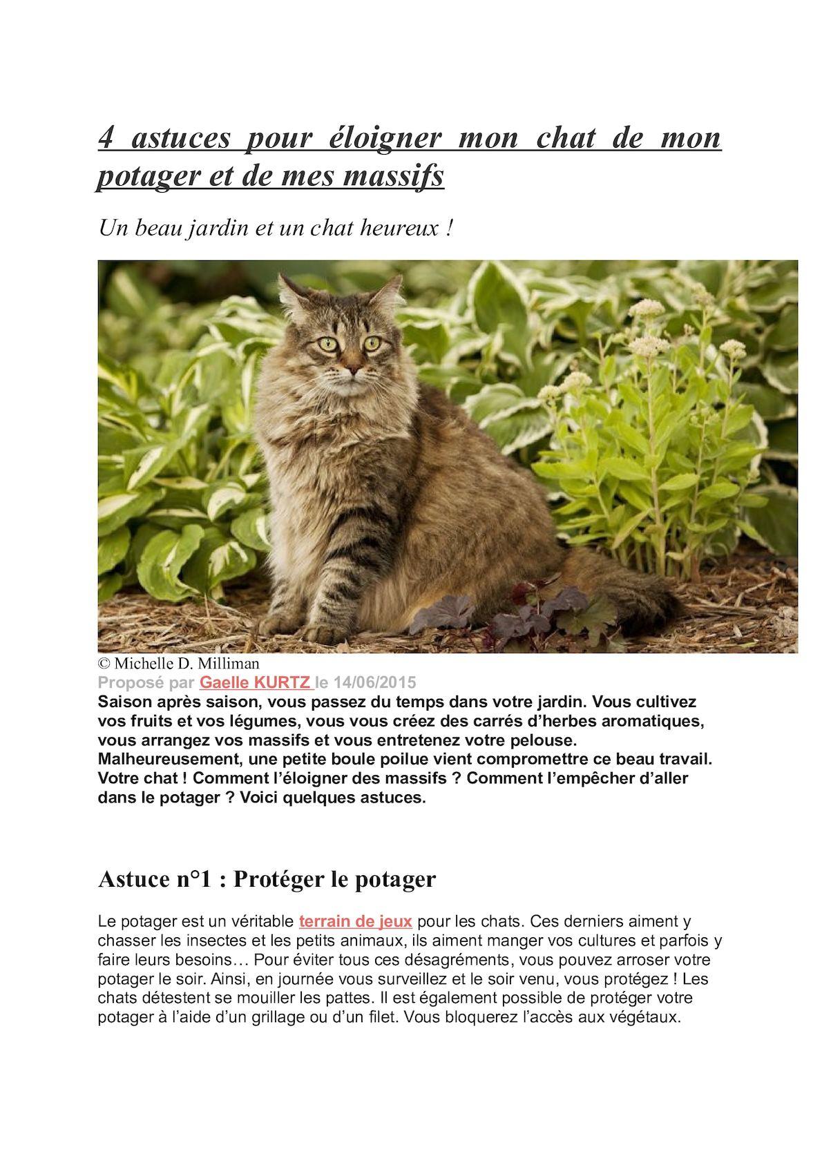 Calaméo - 4 Astuces Pour Éloigner Mon Chat De Mon Potager Et ... encequiconcerne Repulsif Chat Jardin