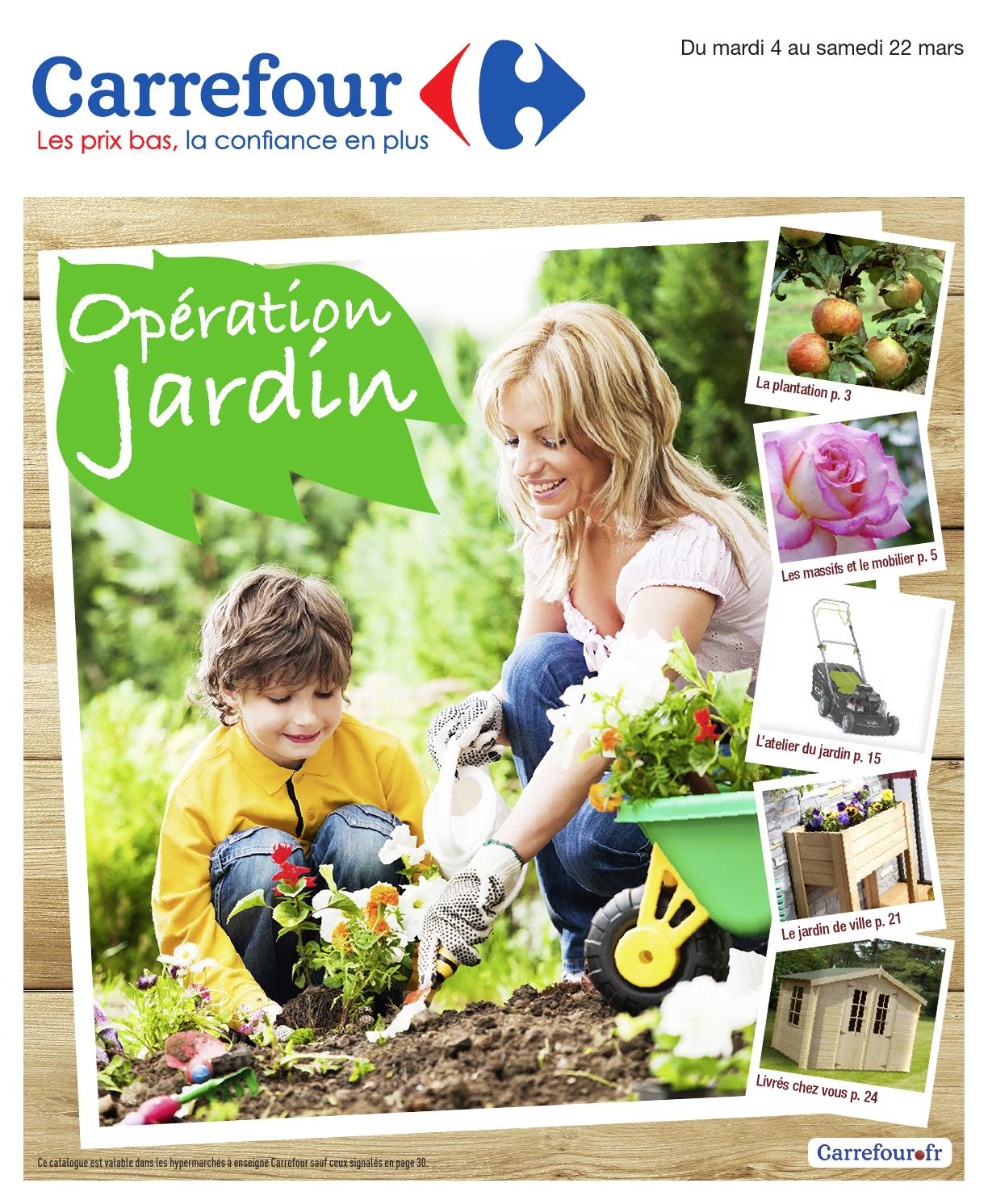 Catalogue Carrefour - 4-22.03.2014 By Joe Monroe - Issuu avec Abris De Jardin Carrefour