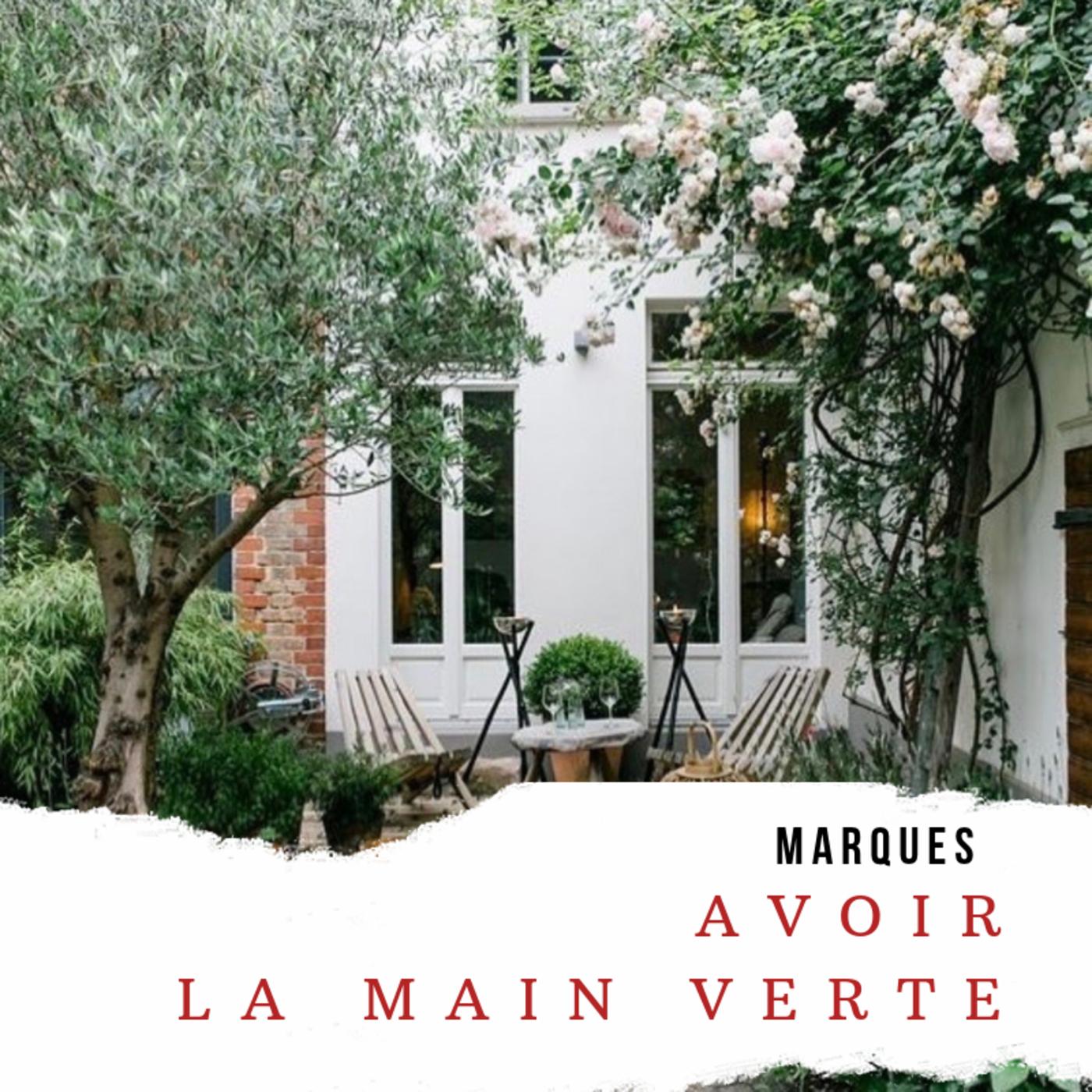 Cendrine Dominguez » Jardiland #3 : Avoir La Main Verte ... encequiconcerne Arche Jardin Jardiland
