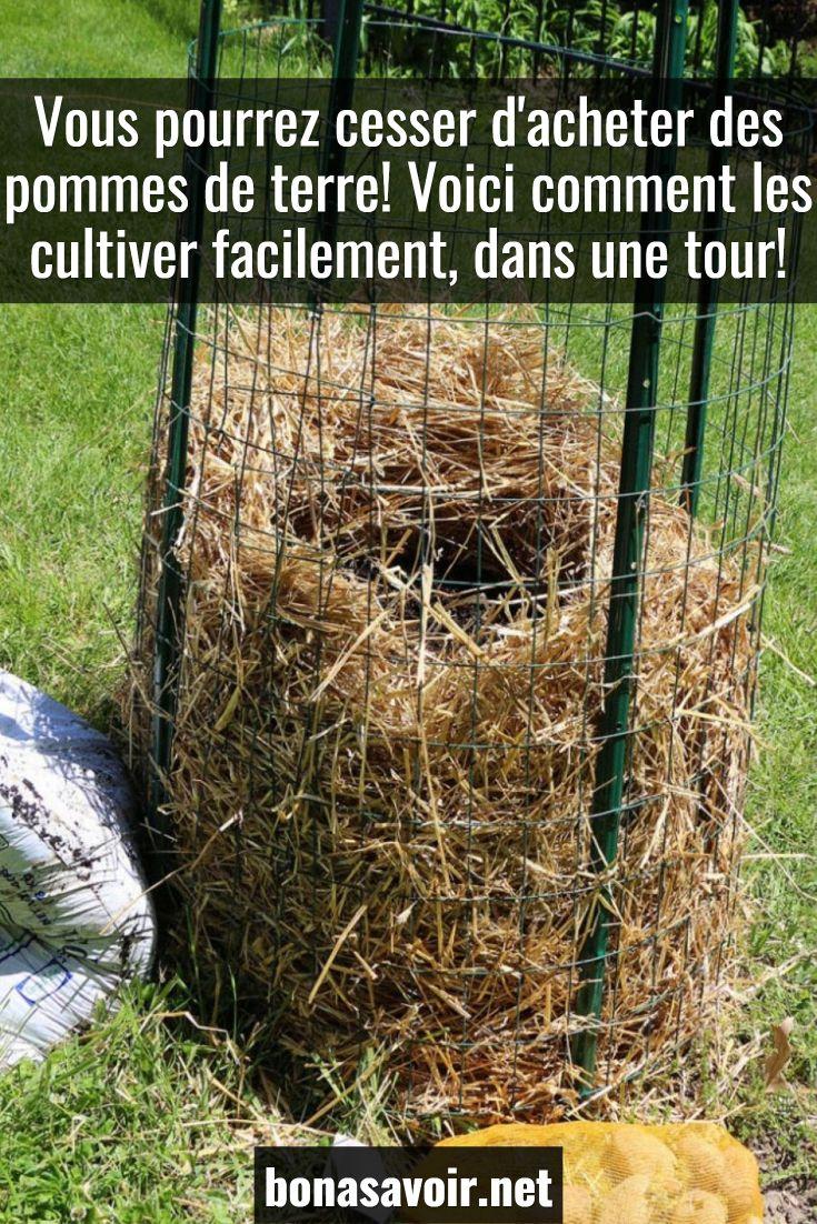 Cette Méthode Permet De Faire La Culture De Pommes De Terre ... encequiconcerne Acheter Un Jardin Potager