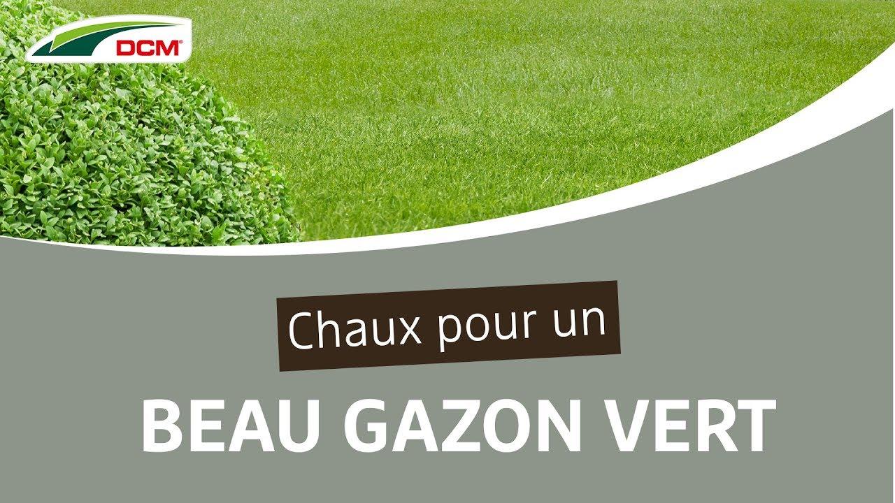 Chaux Pour Un Beau Gazon Vert - Dcm Calcaire Vert® dedans Quelle Chaux Pour Le Jardin