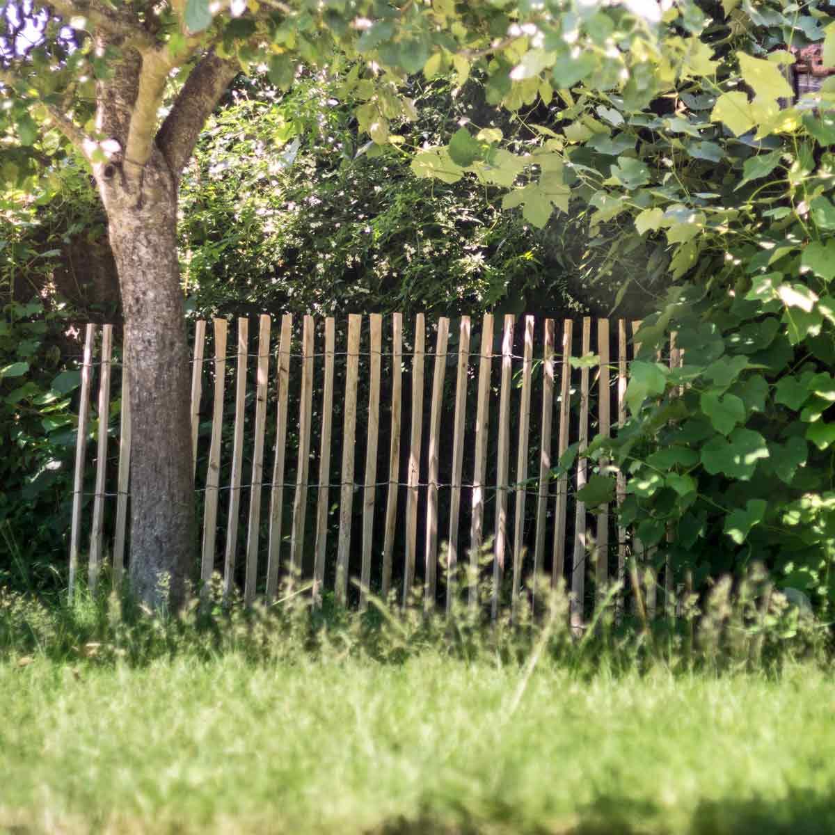 Choisir Et Installer Une Clôture Ou Un Brise-Vue | Jardins ... à Brise Vue De Jardin Pas Cher