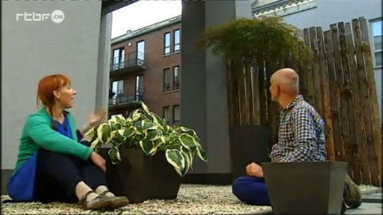 City Jardinage - Le Jardin Zen - Rtbf Jardins Loisirs avec Jardin Zen Belgique