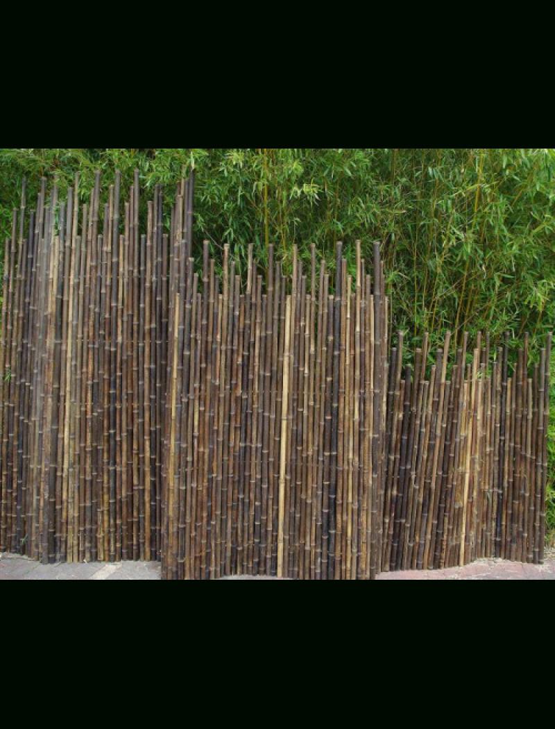 Clôture Bambou Japonaise Noir Ø5Cm avec Cache Vue Jardin