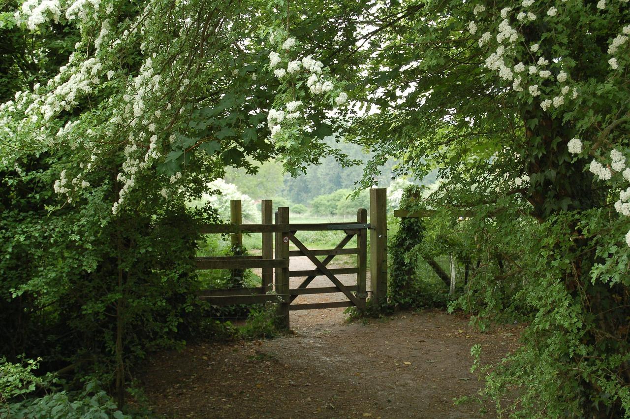 Clôture En Bois, Le Choix De La Simplicité Et De L ... concernant Barrière Bois Jardin