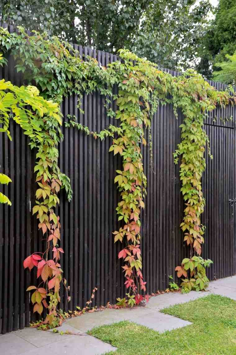 Clôtures Jardin Et Portillons Pour Extérieurs Modernes ... intérieur Clotures De Jardin