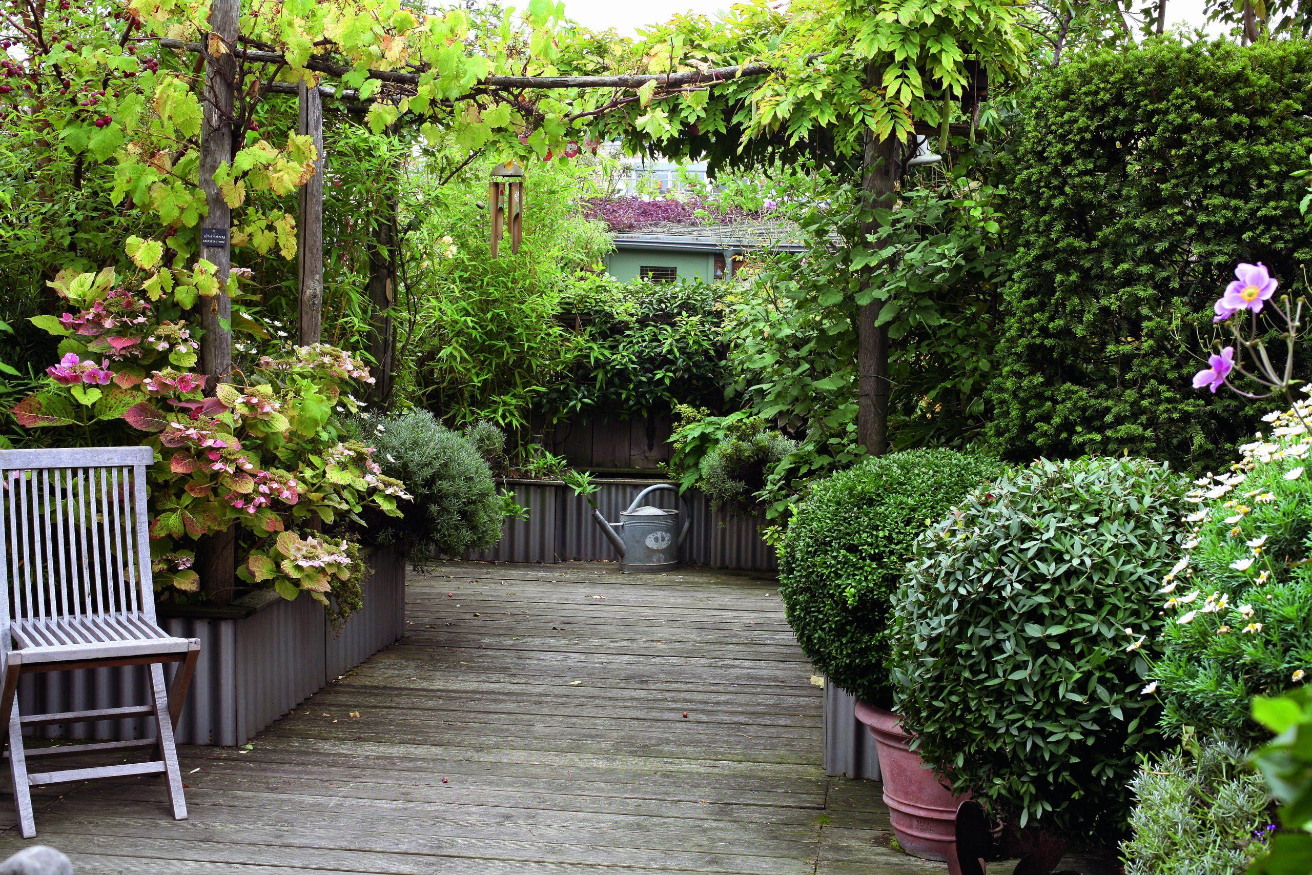 Comment Aménager Son Balcon : Choix Des Fleurs avec Mini Jardin Balcon