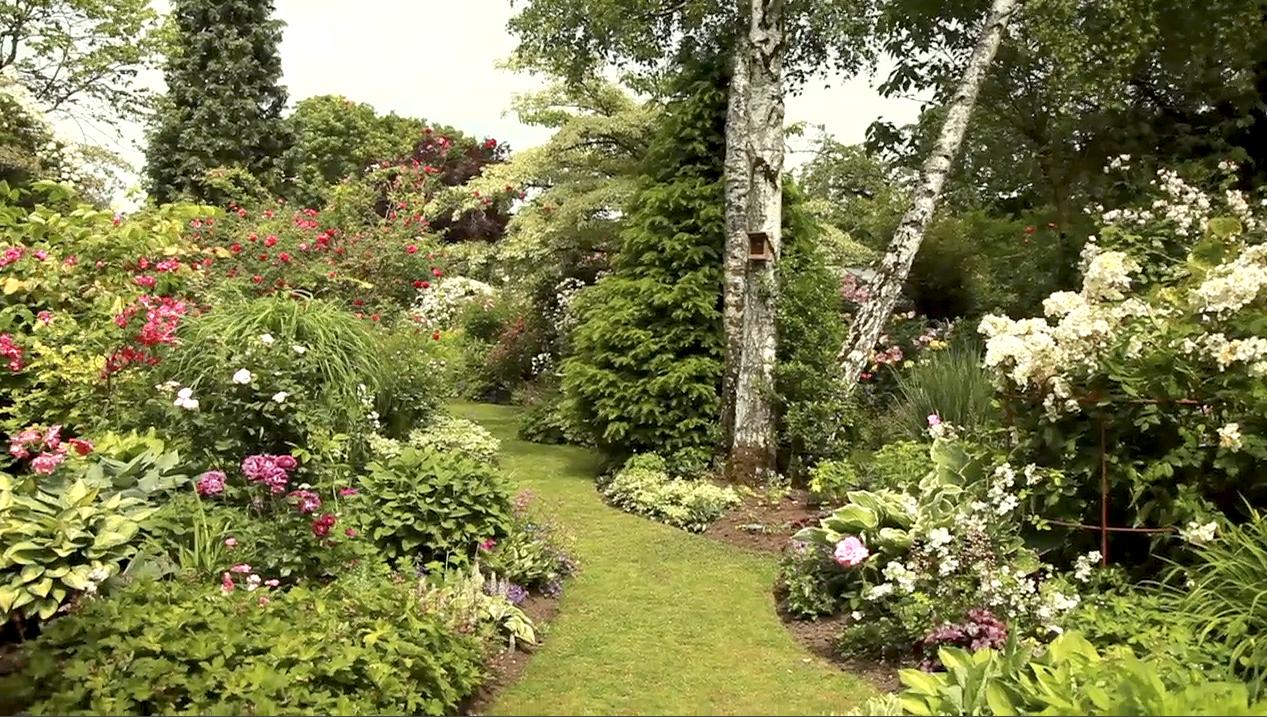 Comment Aménager Un Petit Espace Au Jardin serapportantà Amenagement Jardin Avec Graminees