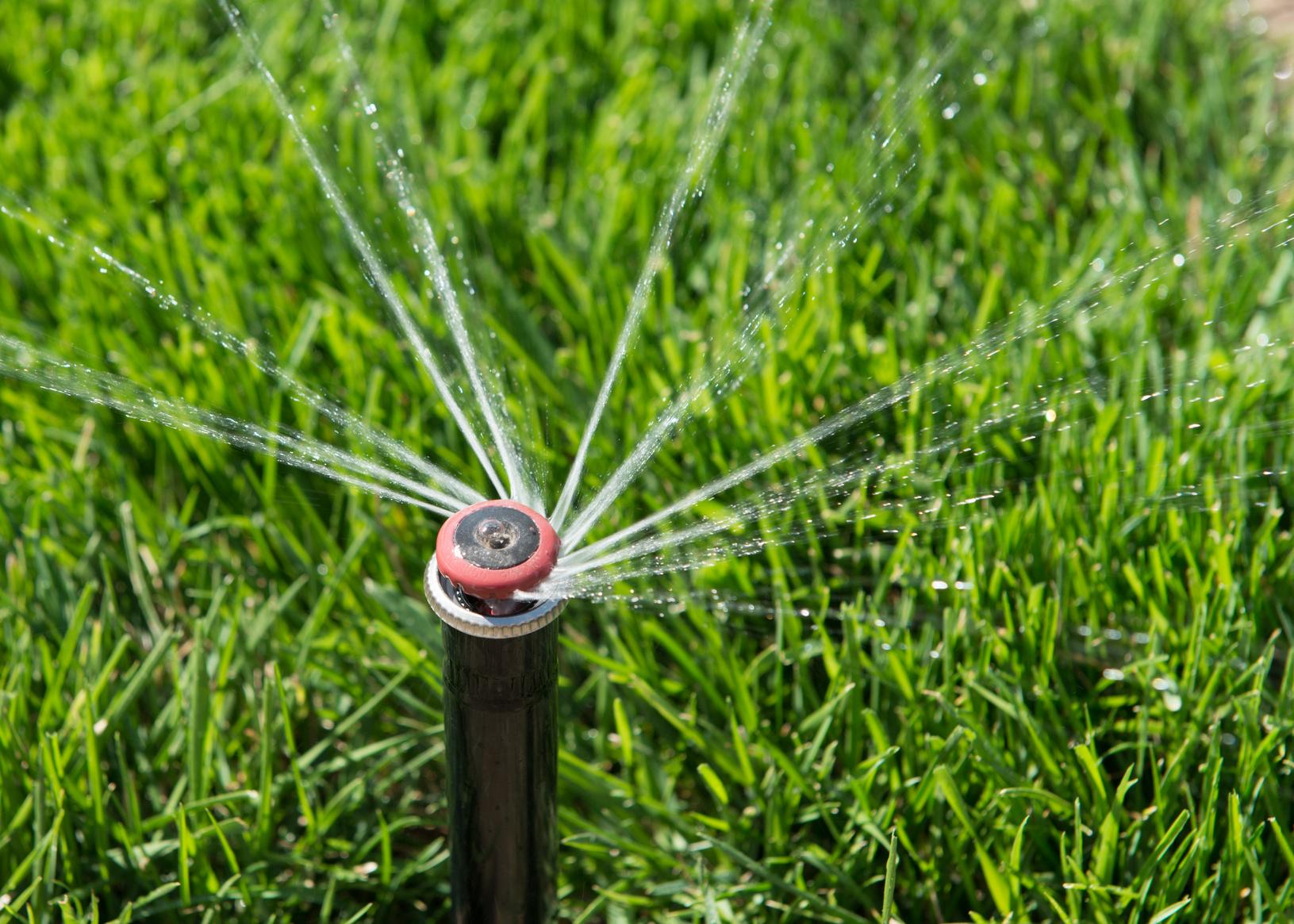 Comment Choisir Une Pompe D'arrosage De Jardin ? avec Pompe Pour Arroser Le Jardin