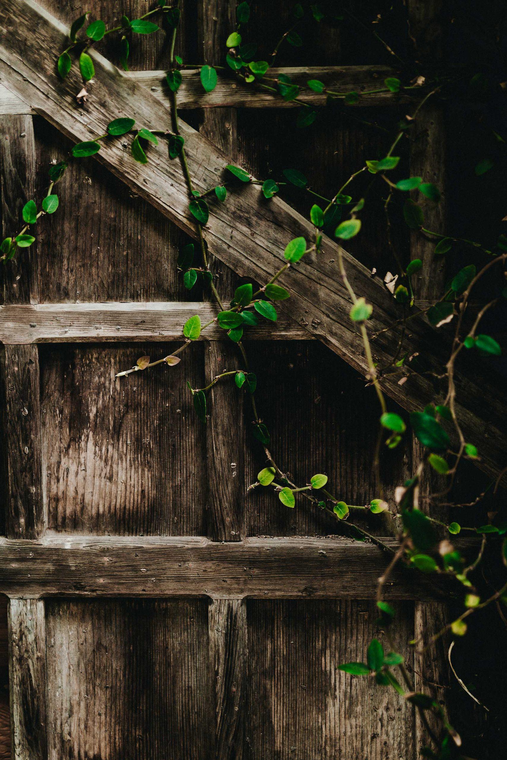 Comment Construire Son Abri De Jardin ? • Actualités ... avec Comment Faire Un Abri De Jardin