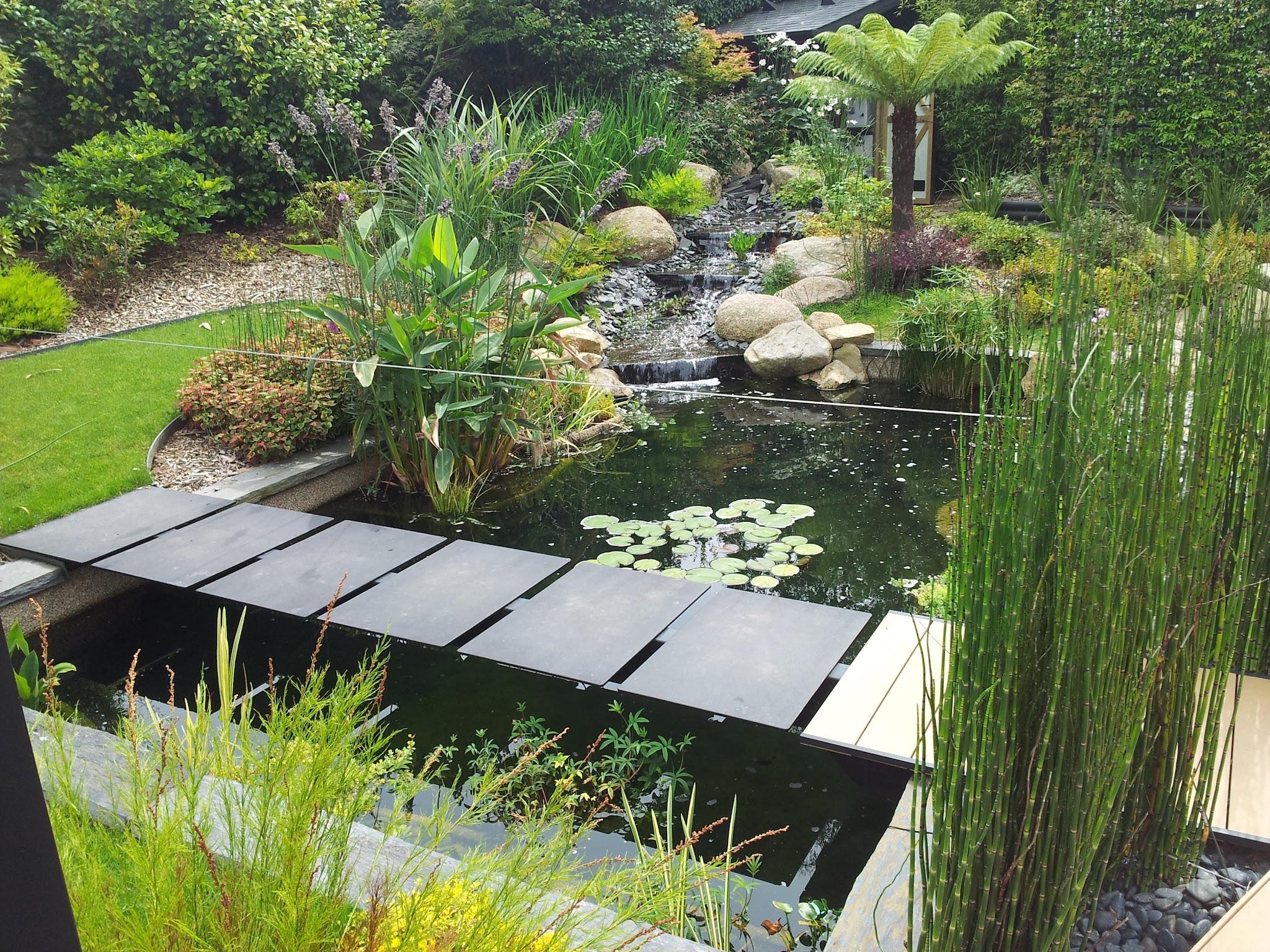 Comment Créer Son Bassin Aquatique ? - Botanica | Espaces ... serapportantà Créer Un Bassin De Jardin